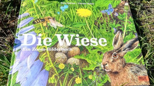 """""""Die Wiese. Ein Zoom – Bilderbuch"""" – Christa Holtei/Hans Baltzer"""