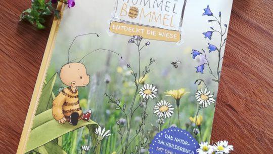"""""""Die kleine Hummel Bommel entdeckt die Wiese"""" – B. Sabbag/M. Kelly/ J. Tourlonias"""