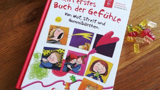 """""""Mein erstes Buch der Gefühle – Von Wut, Streit und Gummibärchen"""" – Dagmar Geisler"""