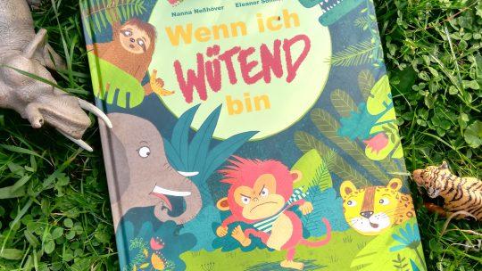"""Umgang mit Wut bei Kleinkindern: """"Wenn ich wütend bin"""" – Nanna Neßhöver, Eleanor Sommer"""