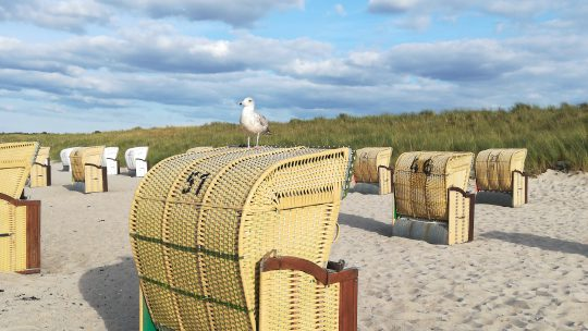Reisen mit Kindern: Urlaub an der Ostsee – Weissenhäuser Strand