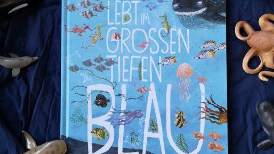 """Sachbuch über Meerestiere: """"Wer lebt im grossen tiefen Blau?"""" – Yuval Zommer"""