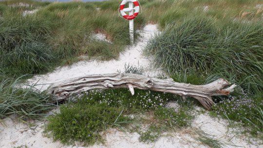 Urlaub mit Kindern auf der wunderschönen dänischen Insel Bornholm – Teil 1