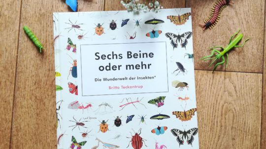 """""""Sechs Beine oder mehr. Die Wunderwelt der Insekten"""" – Britta Teckentrup"""