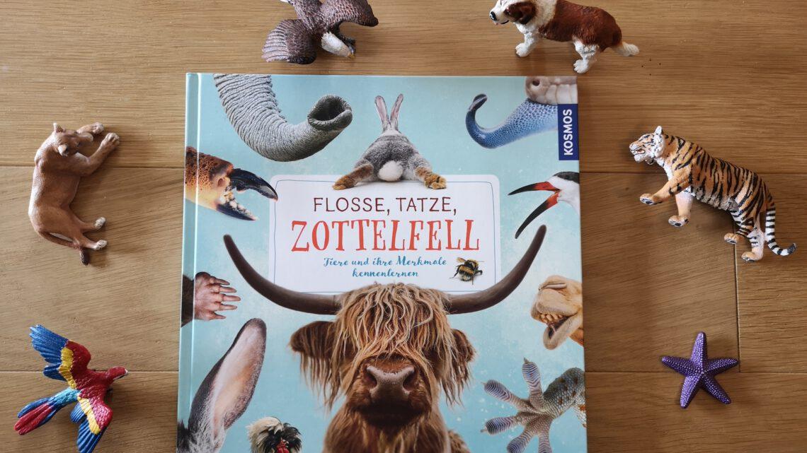 Flosse, Tatze, Zottelfell – Tiere und ihre Merkmale kennenlernen