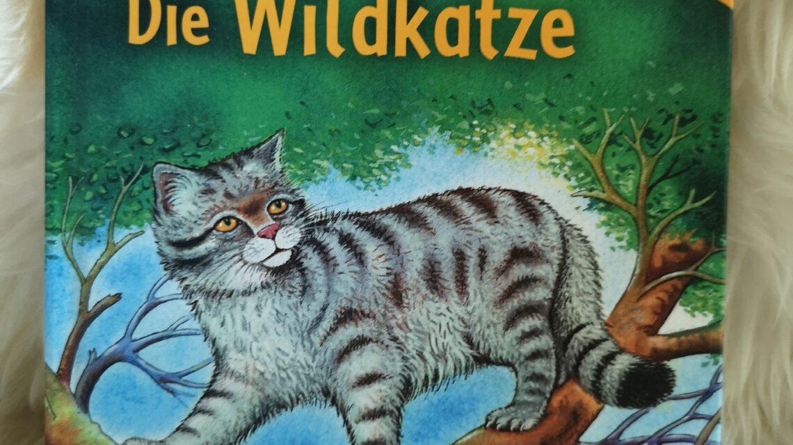 """Sachwissen für Erstleser – """"Die Wildkatze"""""""