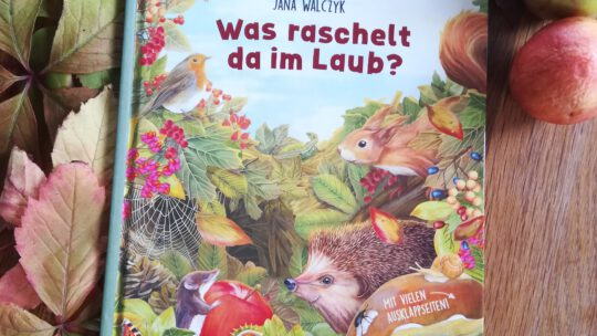 """Ein allerschönstes Herbstbuch: """"Was raschelt da im Laub?"""" – Jana Walczyk"""