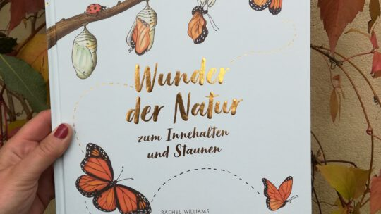 """Ein großartiges Kindersachbuch: """"Wunder der Natur zum Innehalten und Staunen"""""""