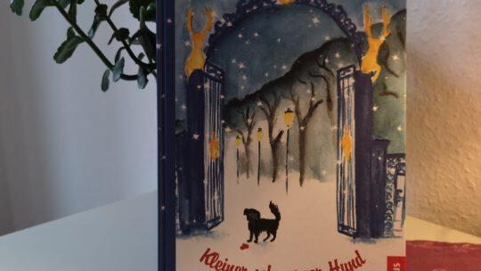 Kleiner schwarzer Hund in der Nacht – Rose & Rebecka Lagercrantz