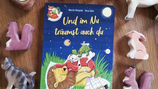 """Vorlesegeschichten zum Einschlafen: """"Und im Nu schläfst auch du"""" – Mascha Matysiak, Tessa Rath"""