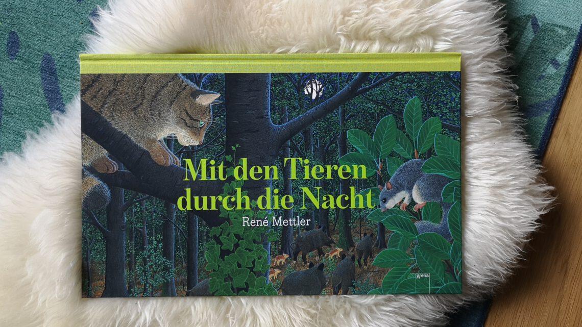 Mit den Tieren durch die Nacht – René Mettler