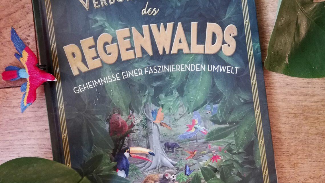 """""""Verborgene Welt des Regenwaldes"""" – Kristina Scharmacher – Schreiber"""
