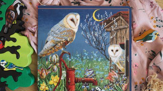 """""""Kleine Vogel – Wunderkammer"""" von Jesko Donst"""