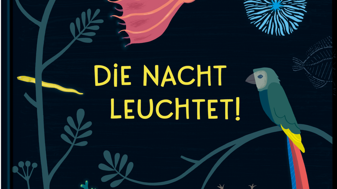 """""""Die Nacht leuchtet"""" – Lena Sjöberg"""