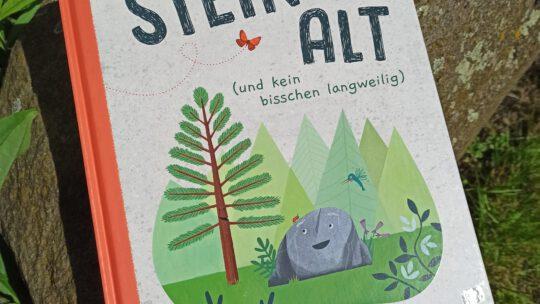 """""""Steinalt (und kein bisschen langweilig)"""" – Deb Pilutti"""