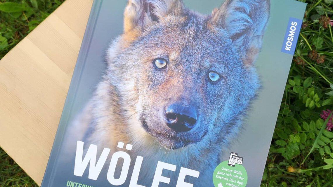 """Spannendes Sachbuch: """"Wölfe"""" von Axel Gomille – mit Verlosung!"""