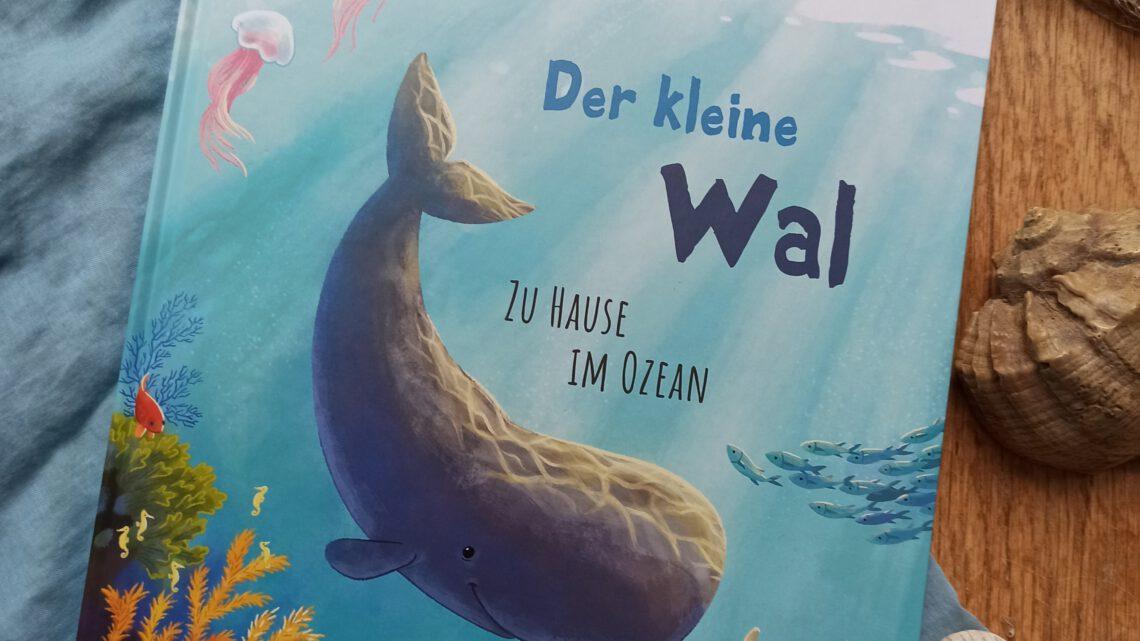 """""""Der kleine Wal. Zu Hause im Ozean"""" – Kristina Scharmacher – Schreiber und Christine Faust"""